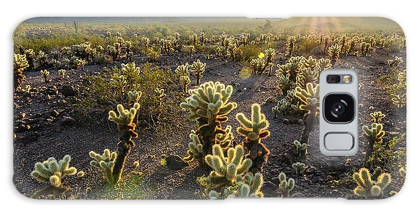 Sea Of Cholla Galaxy Case