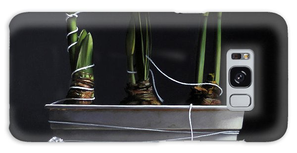 Amaryllis Galaxy Case - Forcing Amaryllis by Lawrence Preston