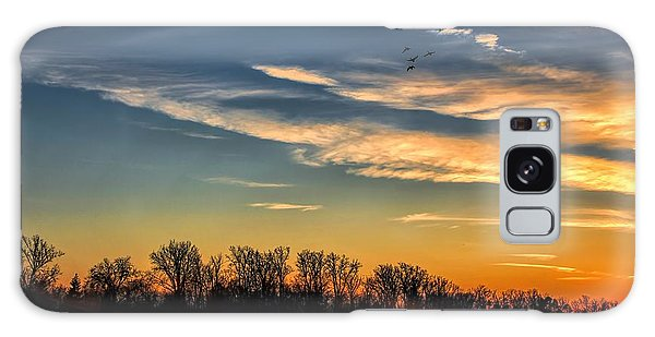Ford Lake Sunset Galaxy Case by Pat Cook