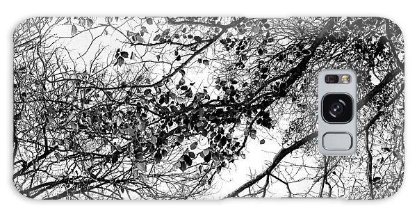 Calendar Galaxy Case - Forest Canopy Bw by Az Jackson