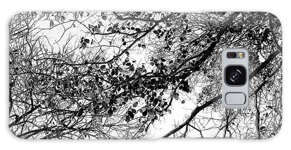 March Galaxy Case - Forest Canopy Bw by Az Jackson