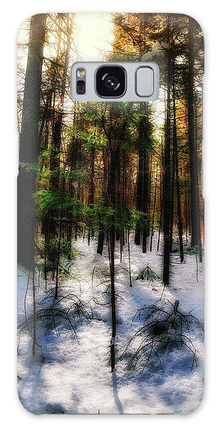 Forest Dawn Galaxy Case