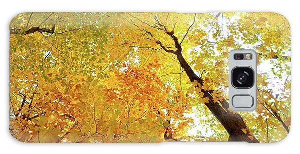 Forest Fall Yellow  Galaxy Case