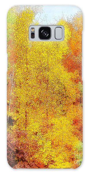 Forest Fire Galaxy Case