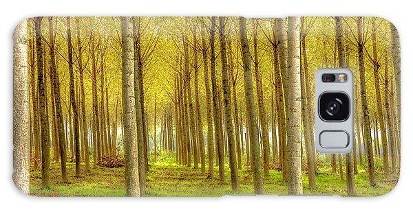 Forest In Autumn Galaxy Case