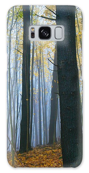 Forest In Fog Galaxy Case