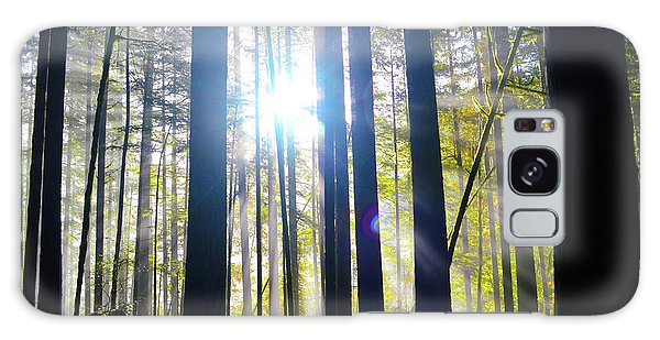 Forest Light Rays Galaxy Case