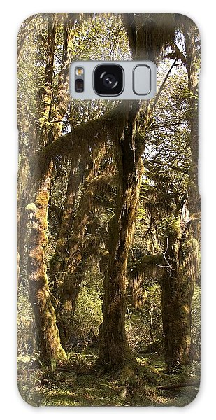 Forest Setting In Hoh Rain Forest Galaxy Case