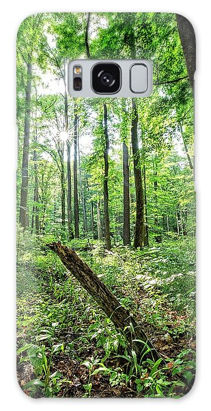 Galaxy Case featuring the photograph Forest Sun by Alan Raasch