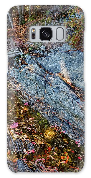 Forest Tidal Pool In Granite, Harpswell, Maine  -100436-100438 Galaxy Case by John Bald