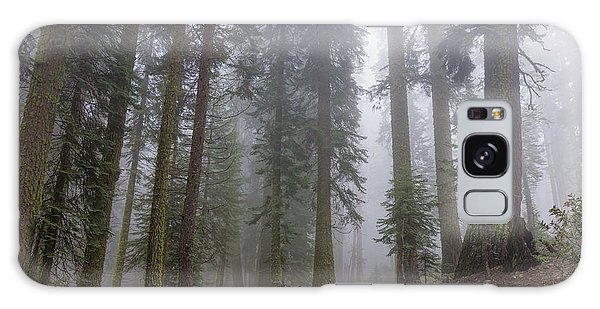 Galaxy Case featuring the photograph Forest Walking Path by Peggy Hughes