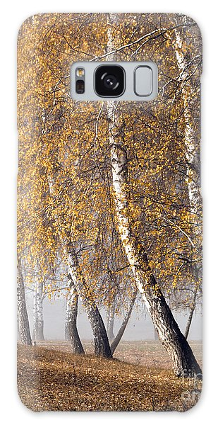 Forest With Birches In The Autumn Galaxy Case by Odon Czintos