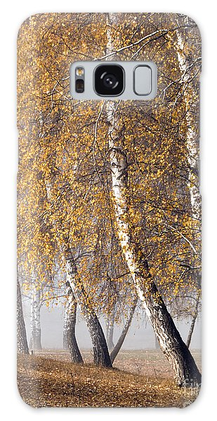 Forest With Birches In The Autumn Galaxy Case