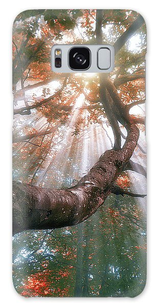 Forest With Fog And Sun Rays Galaxy Case