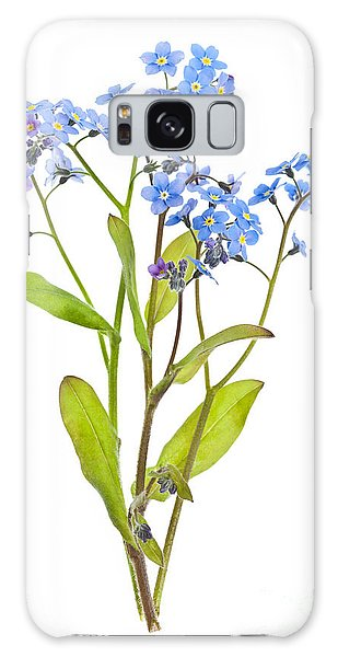 Forget-me-not Flowers On White Galaxy Case