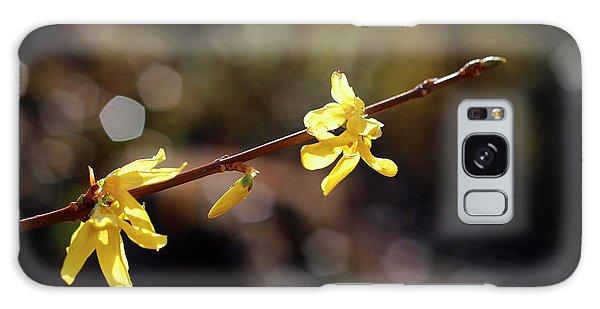 Forsythia Flowers Galaxy Case