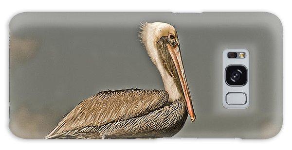 Fort Pierce Pelican Galaxy Case