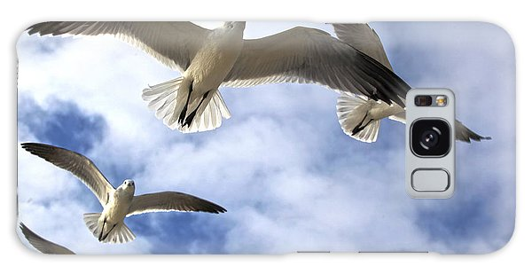 Four Gulls Galaxy Case