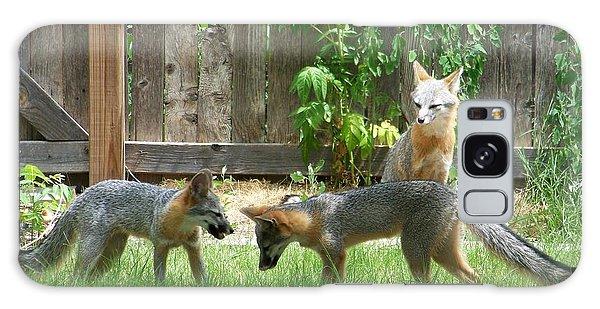 Fox Family Galaxy Case