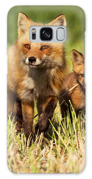 Fox Family Galaxy Case