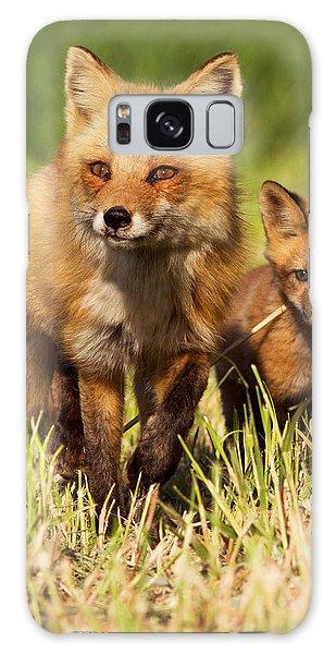 Fox Family Galaxy Case by Mircea Costina Photography