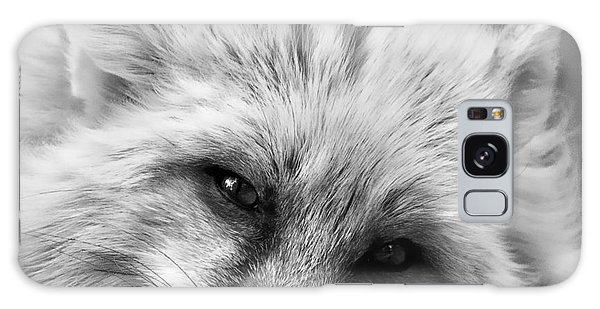 Fox Head Black And White Square Format Galaxy Case by Laurinda Bowling