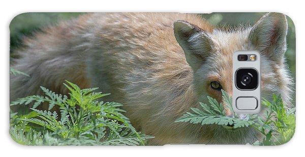 Fox In The Ferns Galaxy Case
