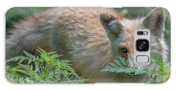 Fox In The Ferns Galaxy Case