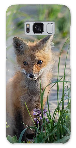 Fox Kit Galaxy Case