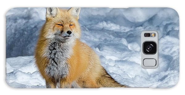 Fox On A Winter Afternoon Galaxy Case