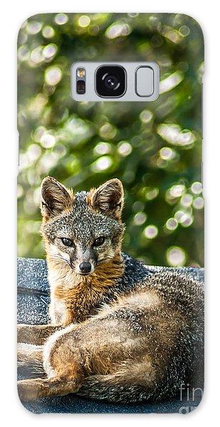 Fox On Roof Galaxy Case