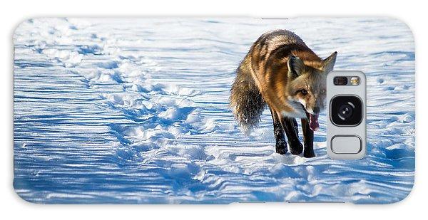 Fox Path Galaxy Case