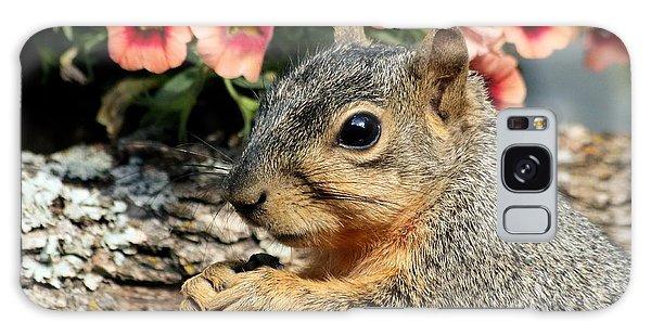 Fox Squirrel Portrait Galaxy Case