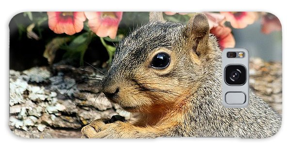 Fox Squirrel Portrait Galaxy Case
