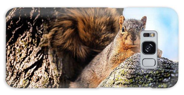 Fox Squirrel Watching Me Galaxy Case