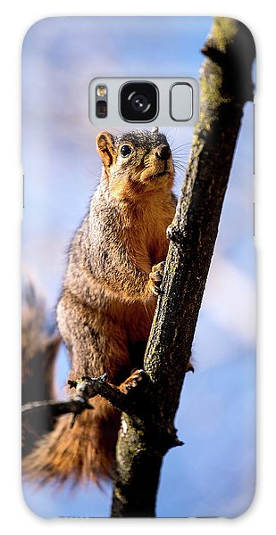 Fox Squirrel's Last Look Galaxy Case by Onyonet  Photo Studios