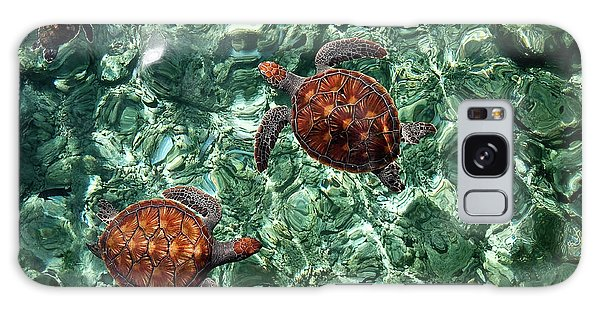 Fragile Underwater World. Sea Turtles In A Crystal Water. Maldives Galaxy Case