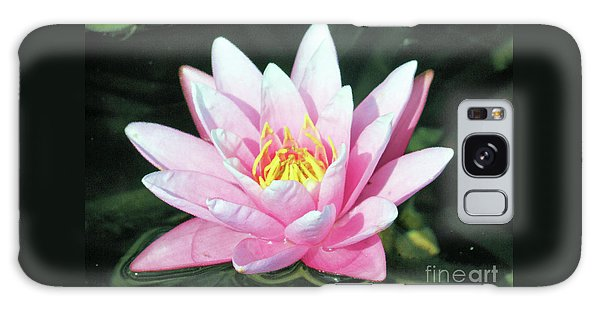 Frail Beauty - A Water Lily Galaxy Case