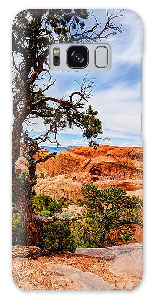 Outdoor Galaxy Case - Framed Arch by Chad Dutson