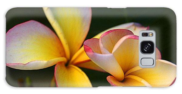 Frangipani Flowers Galaxy Case by Ralph A  Ledergerber-Photography