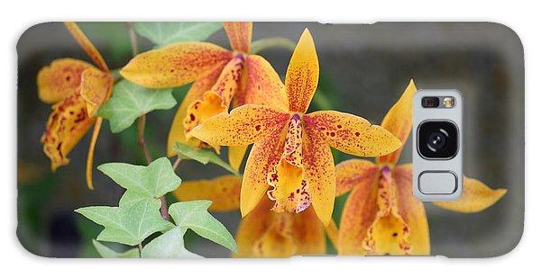 Freckled Flora Galaxy Case by Deborah  Crew-Johnson