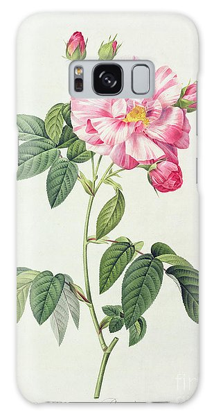 Plants Galaxy Case - French Rose by Pierre Joseph Redoute