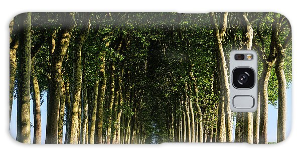 French Tree Lined Country Lane Galaxy Case