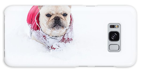Frenchie In The Snow Galaxy Case