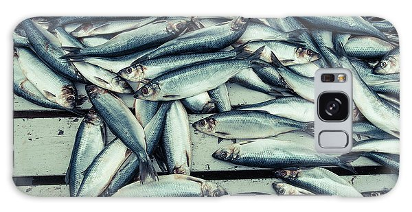 Galaxy Case featuring the photograph Fresh Caught Herring Fish by Edward Fielding