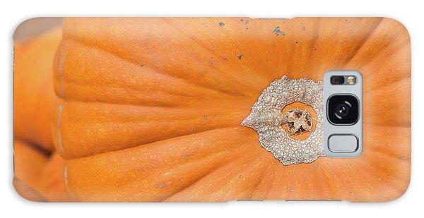 Fresh Organic Orange Giant Pumking Harvesting From Farm At Farme Galaxy Case by Jingjits Photography