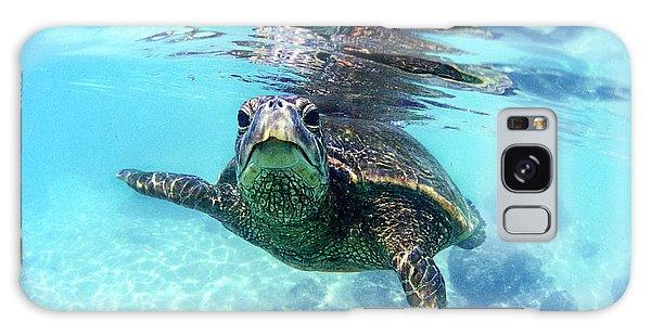 Turtle Galaxy Case - friendly Hawaiian sea turtle  by Sean Davey