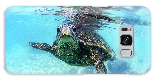 friendly Hawaiian sea turtle  Galaxy Case by Sean Davey