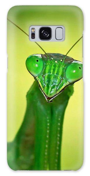 Friendly Mantis Galaxy Case