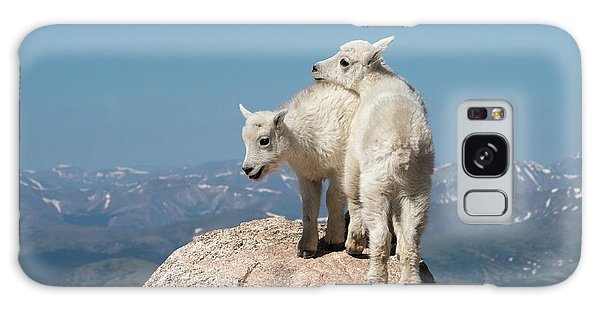 Frisky Mountain Goat Babies Galaxy Case